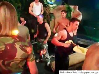 delightful bunch  gays on celebration