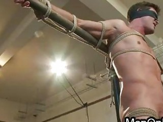 bound blindfolded gay gets balls busting
