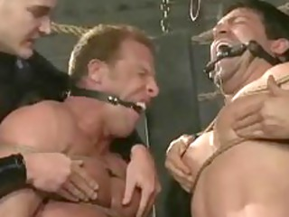 stiff men suspended inside air or tied own