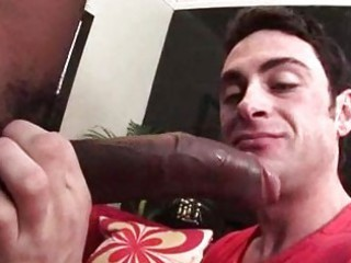 large black libido sucked by ashen gay male
