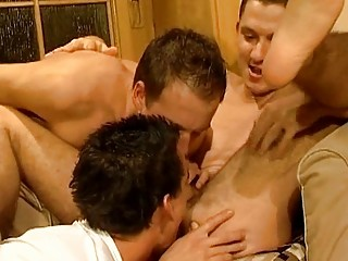 triple brown haired gay studs giving dick sucking