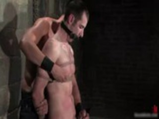highly extreme free gay bondage video files gay